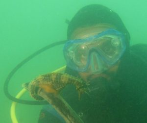 Diver with Seahorse
